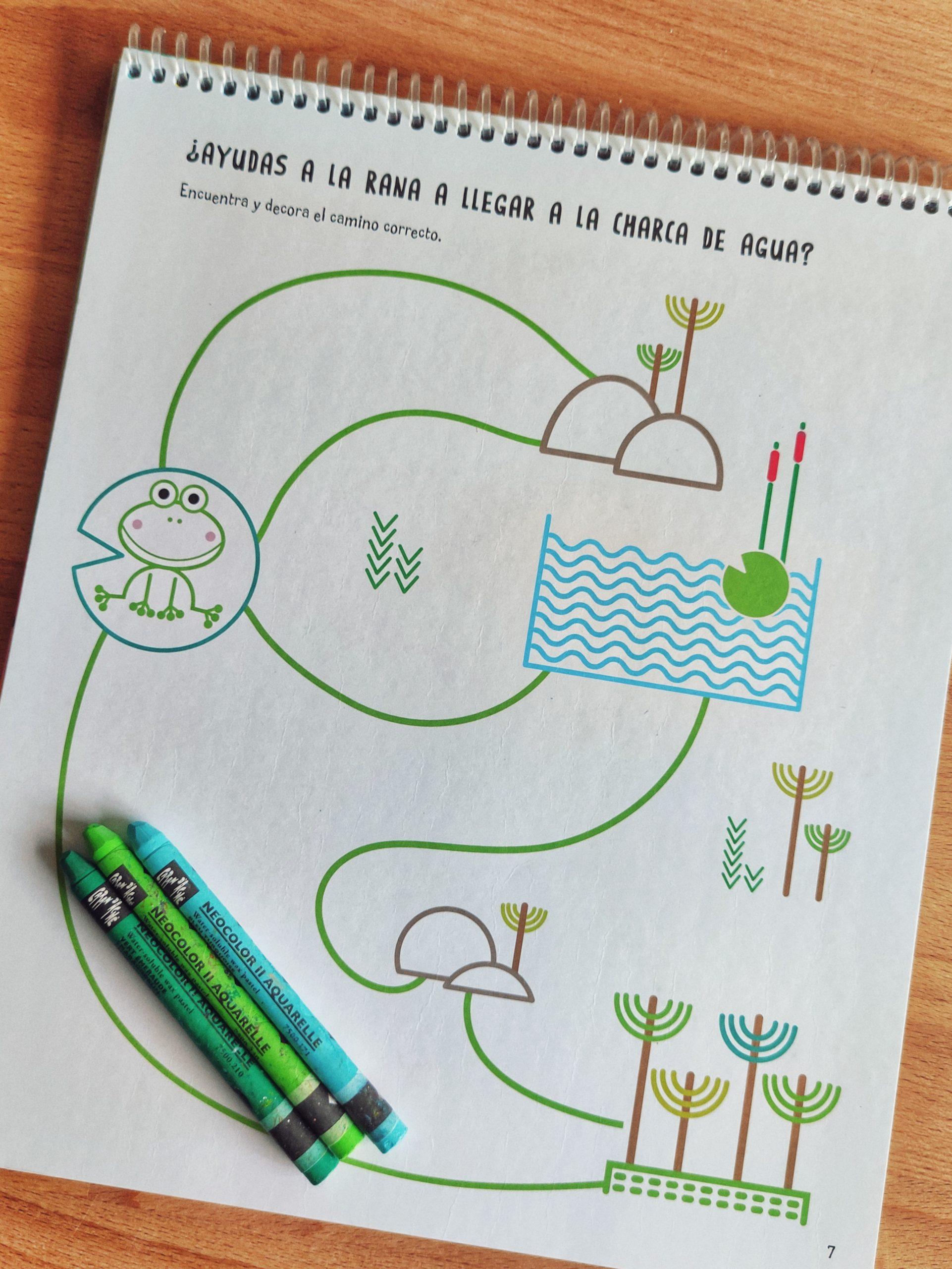 Grafismo creativo - Foto 02 - Raquel Bonita